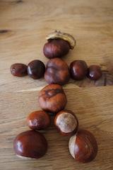 Bevor Ihr loslegt mit dem Basteln, legt die Kastanien locker zu einer Figur hin.  Foto (c) kinderoutdoor.de